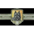 Bouvier Willem II Cigar Band