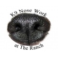 Introduction to Nosework