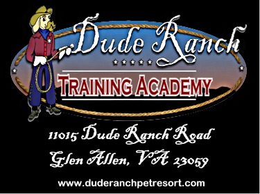 Dude Ranch Academy